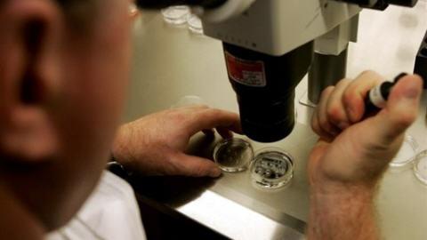 labo-microscope