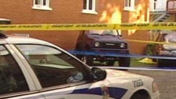 Le poupon a été retrouvé mort, derrière un immeuble de Limoilou