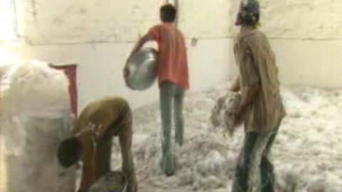 Des images tournées en Inde par la CBC en août dernier révèlent à quel point les mesures de santé et de sécurité pour les travailleurs indiens qui manipulent l'amiante exportée du Québec, sont pratiquement inexistantes.