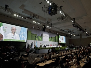 Cérémonie d'ouverture de la 16e Conférence de l'ONU sur les changements climatiques.