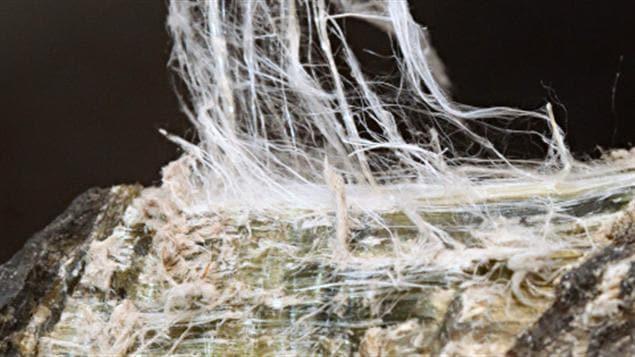 Fibre de chrysotile