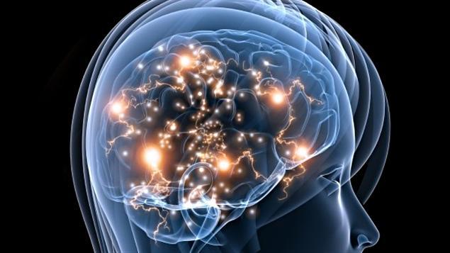 Les particularit s du cerveau autiste ici radio for Neurone miroir autisme