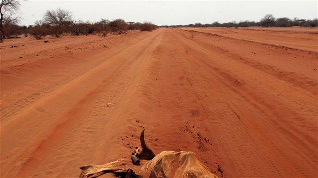 Une route non loin de la ville de Wajir, au Kenya (6 juillet 2011)