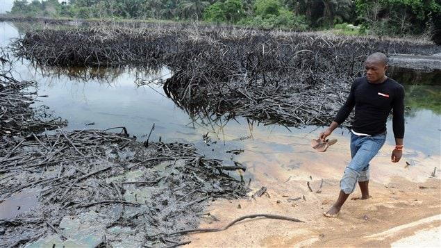 Marée noire au Nigéria