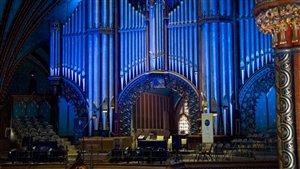 Profession organiste : derrière les flûtes de l'orgue de la basilique Notre-Dame