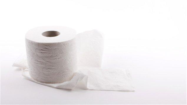 papier de toilette hygiénique rouleau