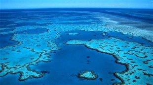 La grande barrière de Corail, en Australie