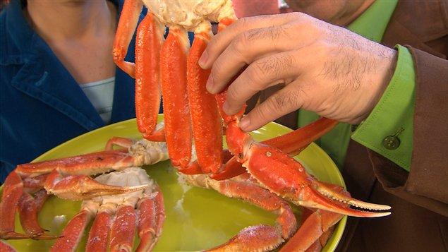 La saison du crabe est de retour!