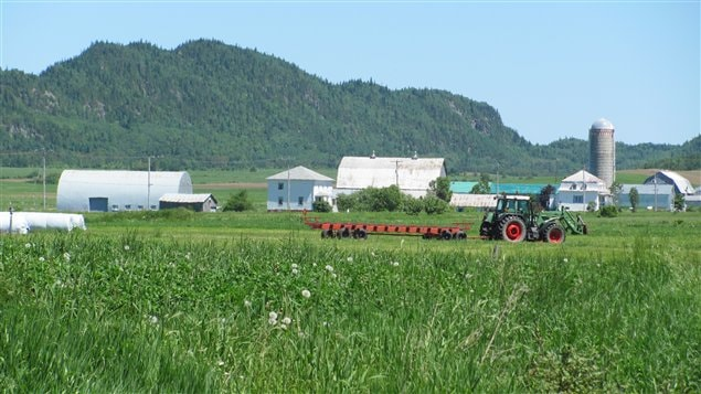 Production agricole dans le Bas-Saint-Laurent