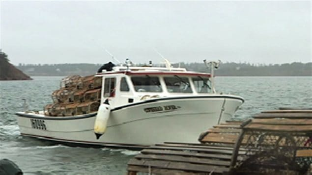 La pêche aux homards a été bonne cette année à l'Île-du-Prince-Édouard.
