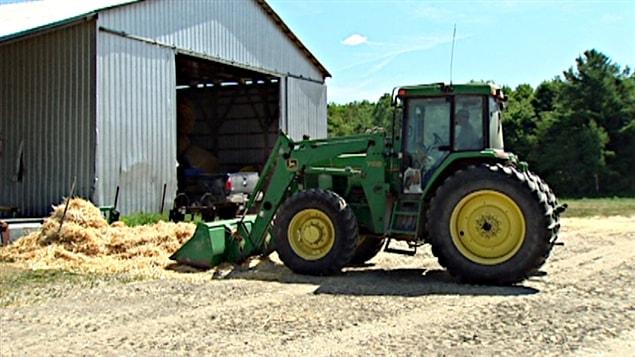 Les éleveurs dans le Pontiac doivent donner leur réserve de foin pour l'hiver à leur troupeau.