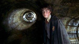 Un livre sur la vie adulte d'Harry Potter paraîtra cet été
