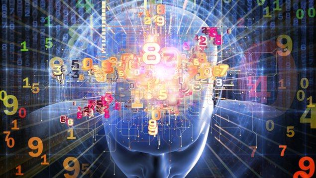 Illustration d'un cerveau humain et de chiffre