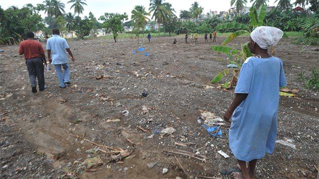 Un champ dévasté après le passage de l'ouragan Sandy