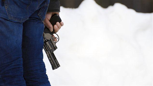 Les armes aux États-Unis, quelques données parlantes