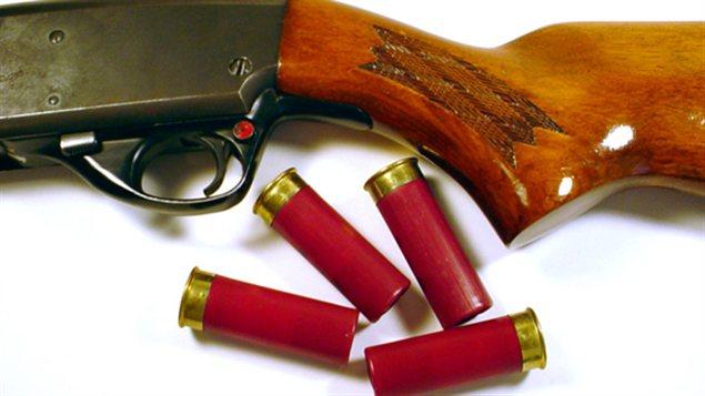Un fusil de chasse et des cartouches
