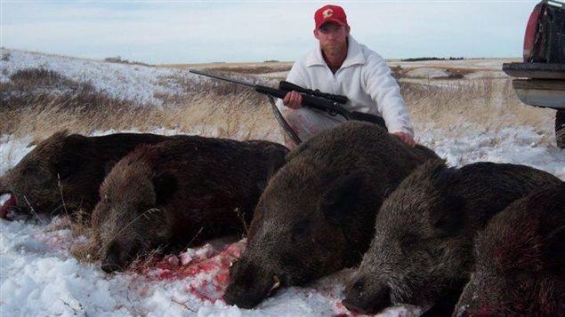 Un chasseur et les sangliers qu'il a tués.