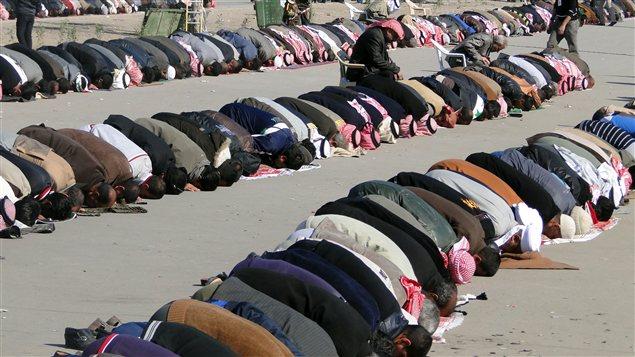 Des sunnites et chiites prient ensemble à Ramadi lors d'une manifestation commune.