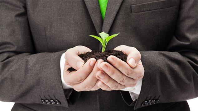 Un homme avec une plante dans les mains