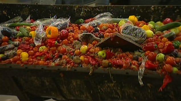 Aliments jetés à la poubelle