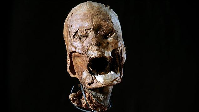 La tête momifiée du roi Henri IV