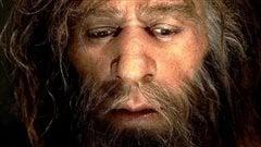 Un maître de Néandertal