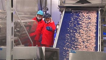 L'usine des Fruits de mer de l'Est du Québec