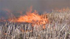 Un incendie dans la Première Nation Carry The Kettle