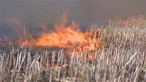 Un incendie ravage des broussailles (archives).