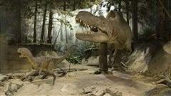 Est-ce que le tyrannosaure avait des lèvres?