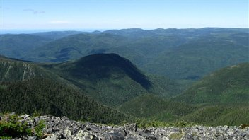 Le parc national de la Gaspésie compte 25 sommets supérieurs à 1000 m, notamment le mont Jacques-Cartier qui est le seconde plus haute montagne du Québec. On peut y admirer le dernier troupeau de caribous forestiers au sud du 49e parallèle.
