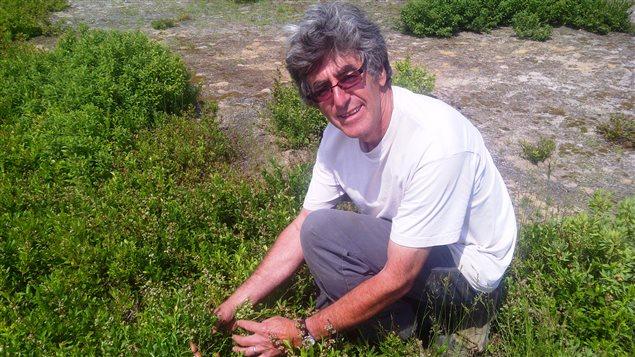 Jean-Maurice Landry, président de l'Association des producteurs de bleuets sauvages du nord-est du N.-B.