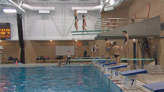 Des plongeurs du rouge et or en exil montr al ici - Dimension d une piscine olympique ...