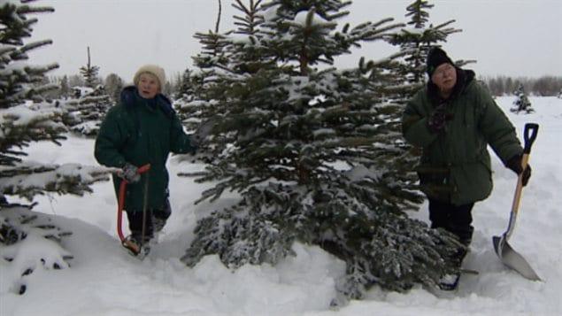 Judy et Peter Kappeler, propriétaires de la sapinière Fir Ever Green