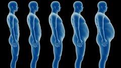 Quand les kilos en trop s'accumulent, l'espérance de vie diminue