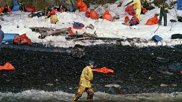Des équipes nettoient les berges polluées par le déversement de pétrole.