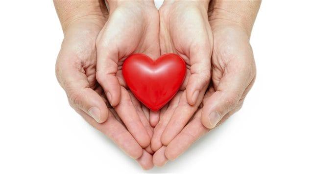 Transplantation cardiaque, don d'organe