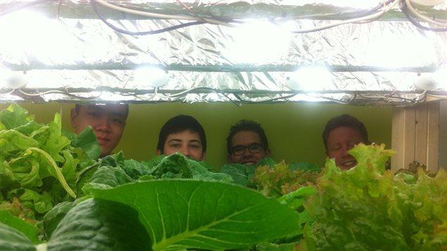 Les élèves participant au projet d'agriculture hydroponique à Gros-Mécatina.