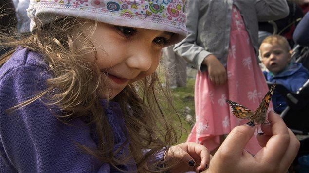 Envolée de papillons à Lac-Mégantic