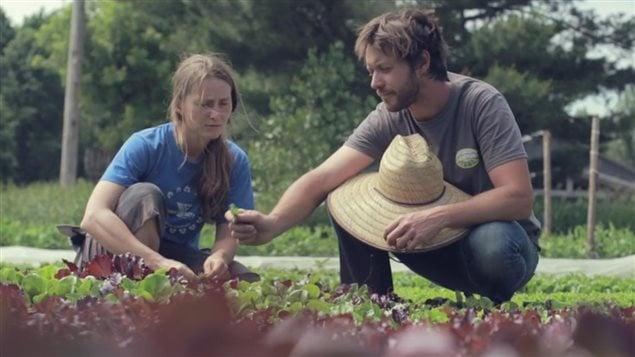 Jean-Martin Fortier et sa femme dans son jardin maraîcher