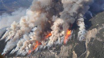 Un outil pour détecter les feux de forêt