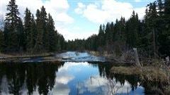 Les incontournables dans les parcs de la province