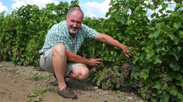 Charles Henri de Coussergues du Vignoble de l'Orpailleur de Dunham (archives)