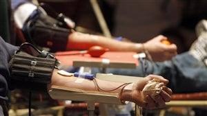 Des délais raccourcis pour les donneurs de sang homosexuels