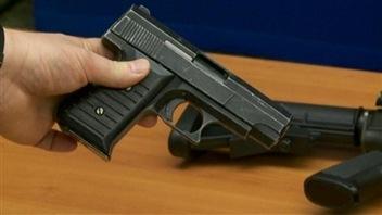 Le gouvernement Harper compte faciliter la vie des propriétaires d'armes à feu.