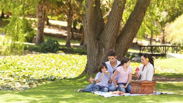 Une famille pique-nique dans un parc.