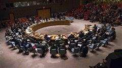 Les nouveaux membres du Conseil de sécuritéde l'ONU