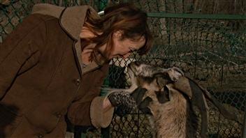 L'éleveuse de chèvres Lynne Rowe, propriétaire du refuge pour animaux Constance Creek, à Dunrobin