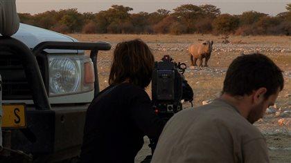 Cameraman filme de loin un rhinocéros