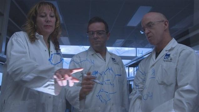 Les chimistes au travail